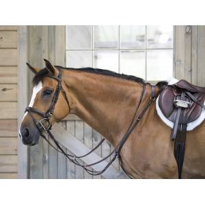 Flat Standing Martingale
